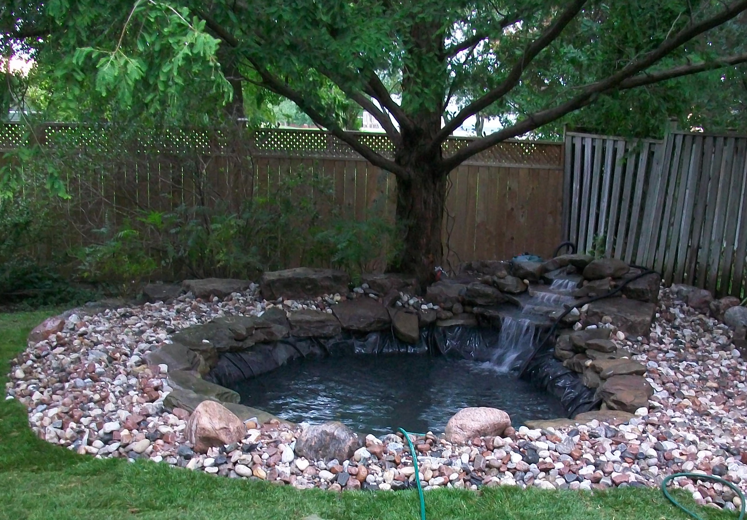 Koi ponds waterfalls and water features tropical touch for Landscaping around koi pond